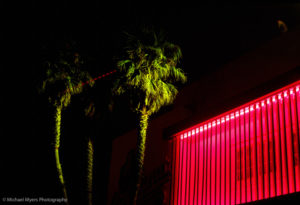 Palm trees, nighttime, red fluorescent lights