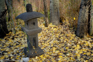 Pagoda, autumn aspen leaves,